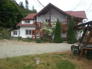 Pensiunea BALEA,Transfagarasan Road,wooden area. - Cartisoara vacation rentals