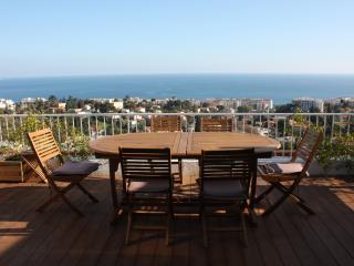 L'Altaïr: studio with amazing view, pool, terrace - Nice vacation rentals