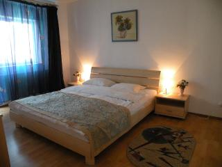 Awesome view on Calea Victoriei, 1 bedroom apart. - Bucharest vacation rentals