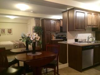 Nice Condo with Internet Access and A/C - Lethbridge vacation rentals