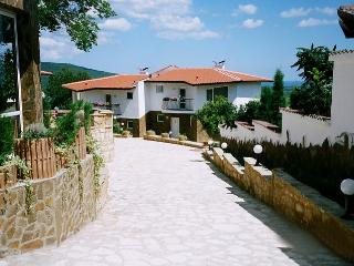 Beautiful Villa with Internet Access and A/C - Rogachevo vacation rentals