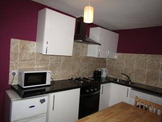 Nice Studio Flat - London vacation rentals