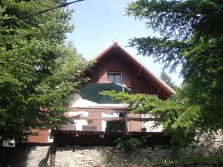 Chalet au calme proche pistes de ski et randonnées - Allos vacation rentals