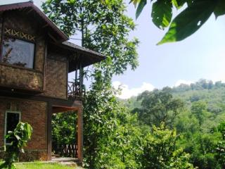 Secluded Hut, Tranquil Location, FREE Breakfast - Bukit Lawang vacation rentals