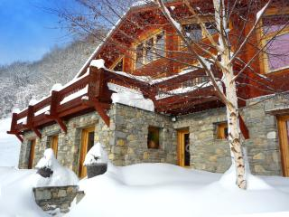 Cozy 2 bedroom Condo in Bourg Saint Maurice - Bourg Saint Maurice vacation rentals