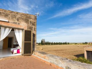 Rustic House in the middle of the Majorcan country - Campos vacation rentals