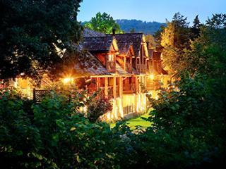 LOOK! Big Cedar Spring-Break Vacation! - Ridgedale vacation rentals