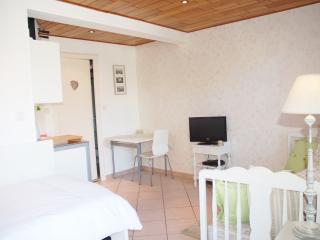 Cosy Studio apartment in Ohlungen near Haguenau / Strasbourg - Haguenau vacation rentals