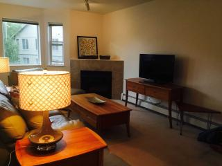 Woodlake Condo - 2 Bath! Laundry IN unit - Anchorage vacation rentals