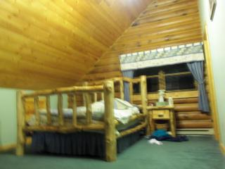 Lakefront Log Home on Snowmobile & Atv Trail - Barnes vacation rentals