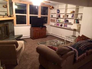 Comfortable House with Deck and Internet Access - Eagle River vacation rentals