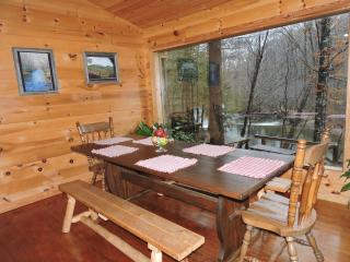 Perfect Cabin with Deck and A/C - Cleveland vacation rentals