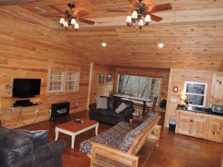 Perfect Cabin with Deck and Dishwasher - Cleveland vacation rentals