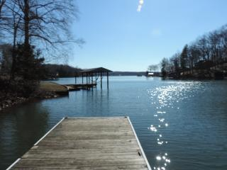 Rustic Cottage; 4 BR, Waterfront, WiFi, Gameroom - Moneta vacation rentals