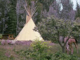 Tipi lodge - Lumby vacation rentals