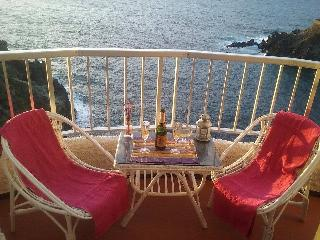 Charming 1 bedroom Condo in Icod de los Vinos - Icod de los Vinos vacation rentals