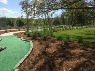 Paradise Point/ Tablerock Lake/Legends of Golf !!! - Hollister vacation rentals