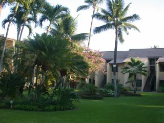 FALL 2016 $85/nt -Great Maui Condo,Steps to Beach - Kihei vacation rentals