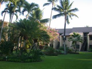 Craving Sun? Maui awaits... only $97/night! -Kihei Condo, Steps to Beach - Kihei vacation rentals