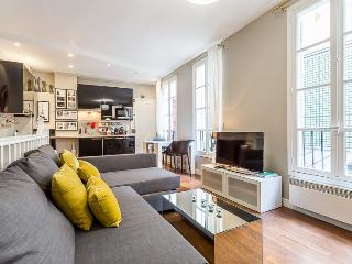 1 bedroom Apartment with Internet Access in 1st Arrondissement Louvre - 1st Arrondissement Louvre vacation rentals
