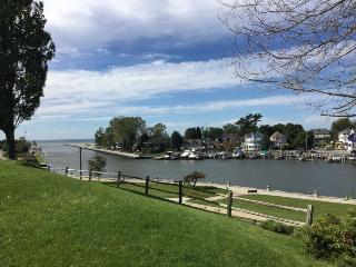 316 Indiana- Lovely Views and Right in Town - South Haven vacation rentals
