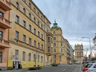Apartment Jiriho z Podebrad - Prague vacation rentals