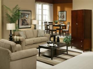 Convenient Resort with Internet Access and A/C - Houston vacation rentals