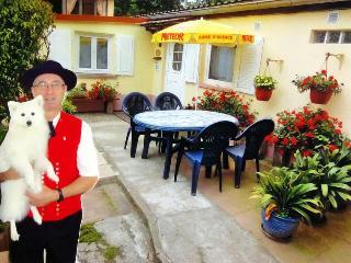 les Gites de la Bruche à Molsheim Alsace France - Molsheim vacation rentals