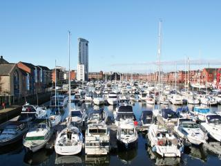 Two Bedroom Apartment - Abernethy Quay - Swansea vacation rentals