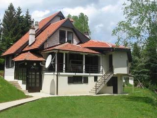 "Apartments ""Vlasinski Vrtovi"" Vlasinsko Lake - Vlasinsko Jezero vacation rentals"