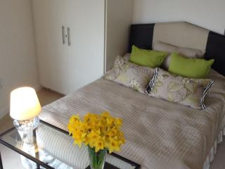 Central London Luxury, Studio room with Balcony - London vacation rentals