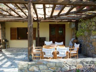 3 bedroom Condo with Internet Access in Ormos Panagias - Ormos Panagias vacation rentals