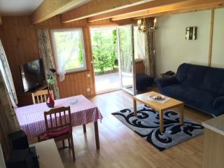 Nice Condo with Television and Water Views - Kandersteg vacation rentals