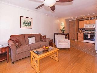 Newly Remodeled Condo Close Walk to Beaches - Honolulu vacation rentals