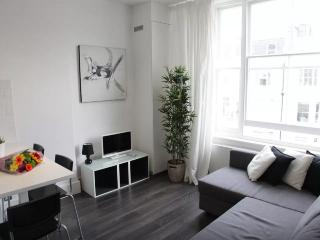 Fantastic 1BD flat in the centre - London vacation rentals