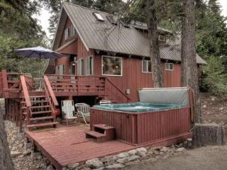 Pfeiffer Dog Friendly Cabin - Hot Tub - Agate Bay vacation rentals