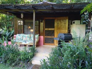 Romantic Cottage with Internet Access and Mountain Views - Utuado vacation rentals