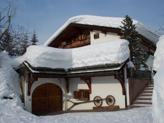 Chalet Runca First Floor Apartment - Arosa vacation rentals