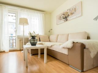CENTRAL APARTMENT, downtown flat for ski holidays - Andermatt vacation rentals