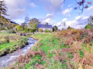 Cozy 3 bedroom Ganllwyd Cottage with Television - Ganllwyd vacation rentals