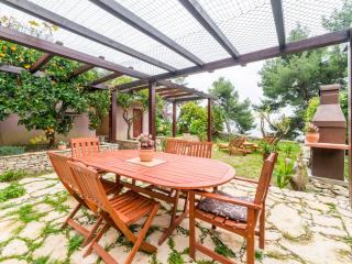Villa Karina - Idylic accommodation in park forest - Split vacation rentals