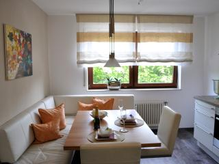 Cozy 2 bedroom Condo in Baden-Baden - Baden-Baden vacation rentals