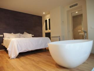 Sleep & Stay Luxury apartment with terrace Rambla - Girona vacation rentals