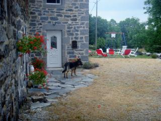 4 bedroom Gite with Swing Set in Fay-sur-Lignon - Fay-sur-Lignon vacation rentals