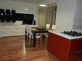 Bright Condo with Dishwasher and Toaster - Swieqi vacation rentals