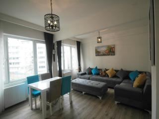 In the Middle of Istanbul,Taksim Square,75 m2 - Istanbul vacation rentals