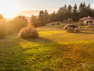 Ocean View Mountain Top Retreat On Monterey Bay - Corralitos vacation rentals
