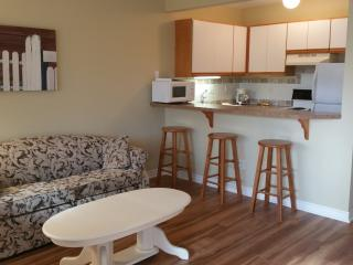Sandpiper 8 of Friday Harbor (One-bedroom) - Friday Harbor vacation rentals