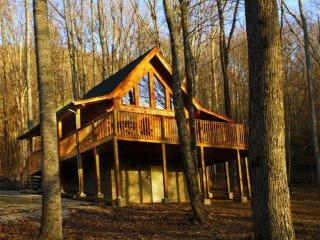 Help The Smokies Recovery Special--January--  April 10,2017 $110.00 per night - Pigeon Forge vacation rentals