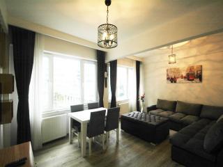 2 minutes to Taksim Square,75 m2 Big Sunny Flat - Istanbul vacation rentals